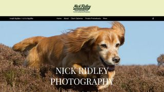 Nick Ridley Photography